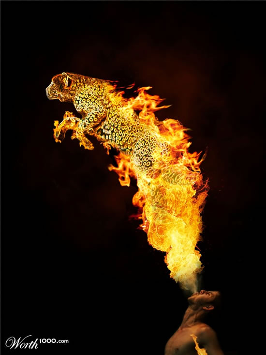 Top 40 des photomontages de FEU 14