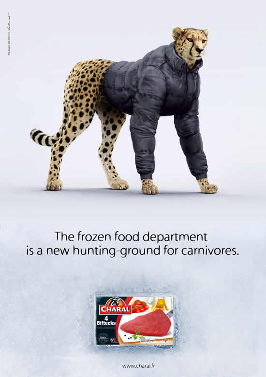70+ publicités designs et créatives de Juillet 2010 54