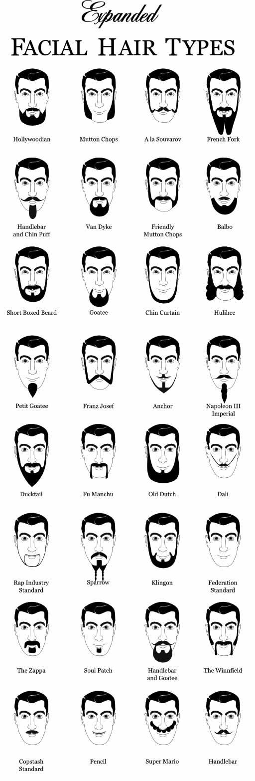 Des moustaches designs et créatives 5