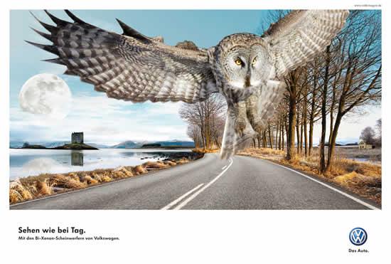 78+ publicités designs et créatives de Aout 2010 4