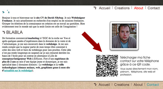cv en ligne flash code
