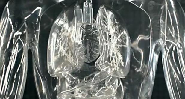 Les organes en verre de Toyota 2