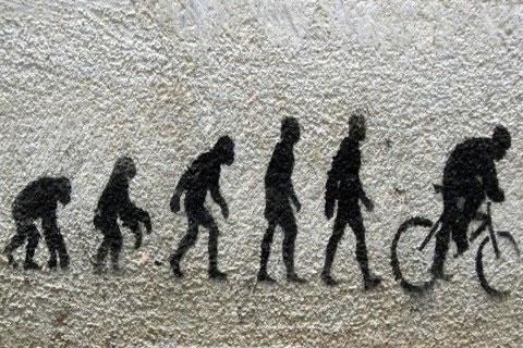 16 parodies de l'évolution de l'homme 7