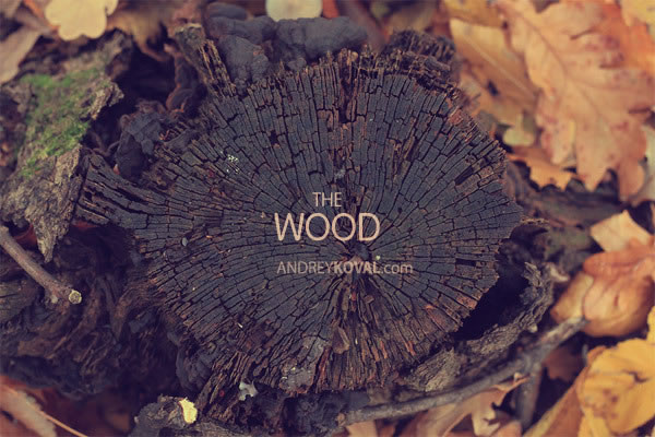 The Wood - petits persos 3D dans la nature 8