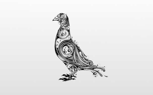 Le superbe illustrations d'animaux de Si Scott 11