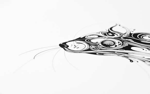 Le superbe illustrations d'animaux de Si Scott 15