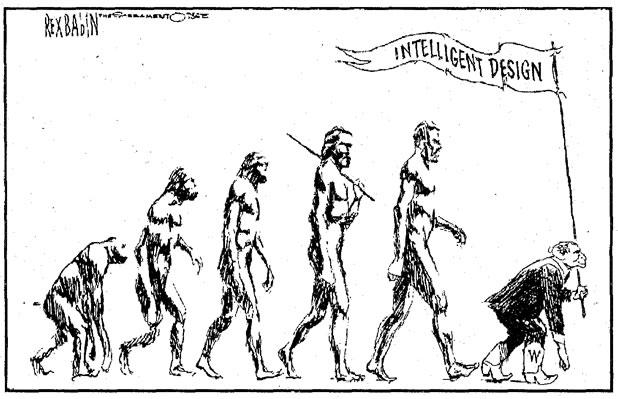 16 parodies de l'évolution de l'homme 15