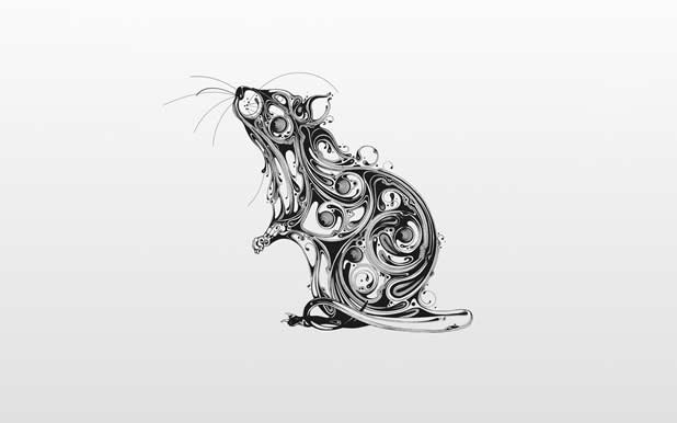 Le superbe illustrations d'animaux de Si Scott 17