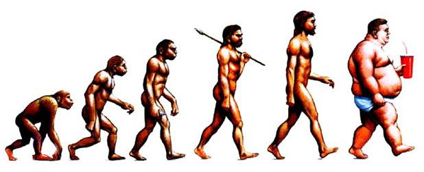 16 parodies de l'évolution de l'homme 16