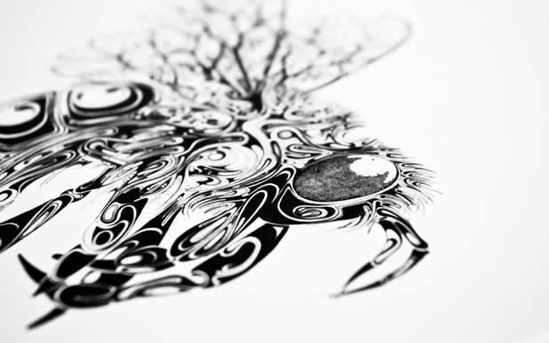 Le superbe illustrations d'animaux de Si Scott 19