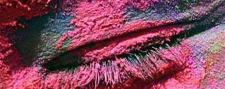 Holi - Le festival des couleurs 11