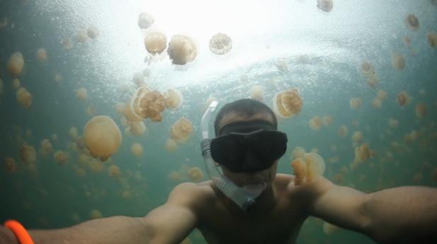 Le lac aux méduses 3