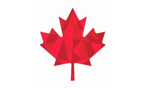 Identité Visuelle de l'équipe Olympique Canadienne 2011 1