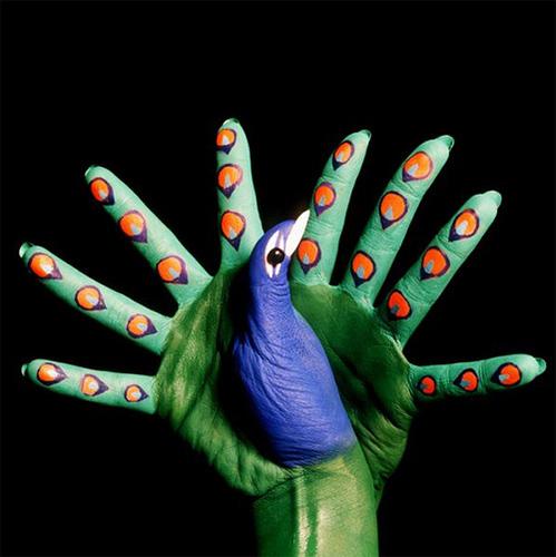 50 meilleurs fingers art 50