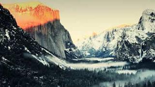 Une journée de Timelapse avec la nature - Jane Goodall 1