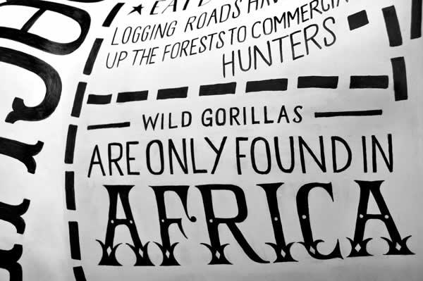 un Gorille typographique pour le 175ème anniversaire du Zoo de Bristol 3