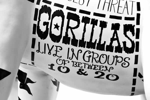 un Gorille typographique pour le 175ème anniversaire du Zoo de Bristol 10