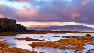 TimeLapse coloré en Iceland | Midnight Sun