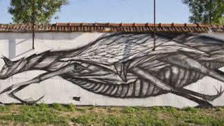 50 street-art fun et créatifs - vol 7