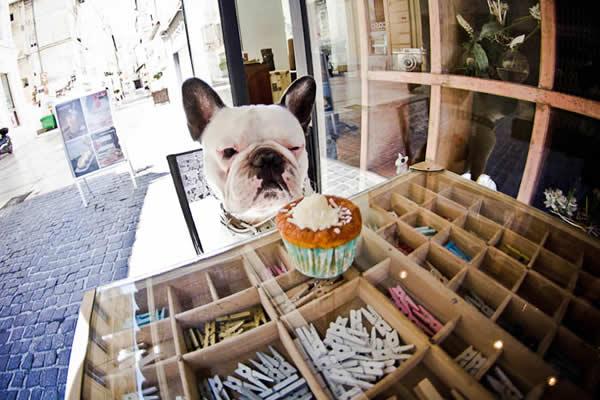 5 Design d'intérieur de Shop Cupcakes qui ont la classe 20