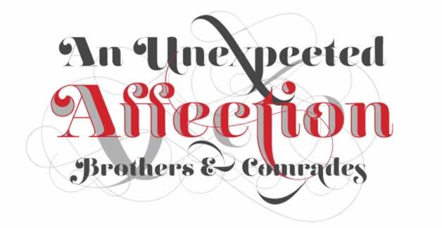 Les 15 typographies les plus populaires de 2011 15