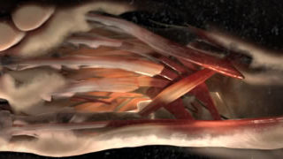 Teaser de la technologie Nike FLYKNIT 1