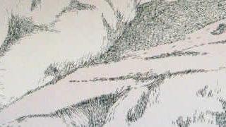 Aggravure - une fresque avec des agrafes  1