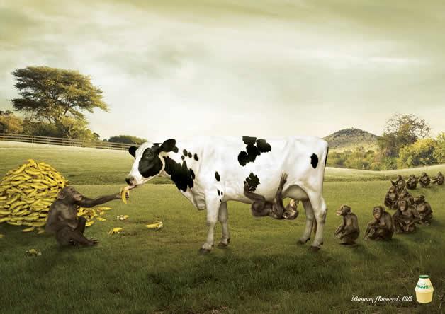 100 publicités designs et créatives d'avril 2012 15