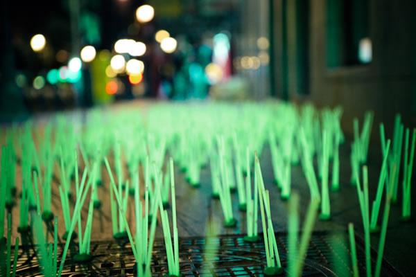 De l'herbe lumineuse en guise de Street-art 5