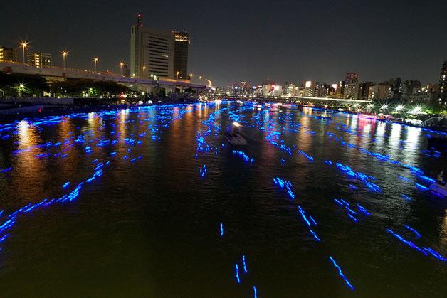 100 000 Led dans la riviere sumida à Tokyo 6