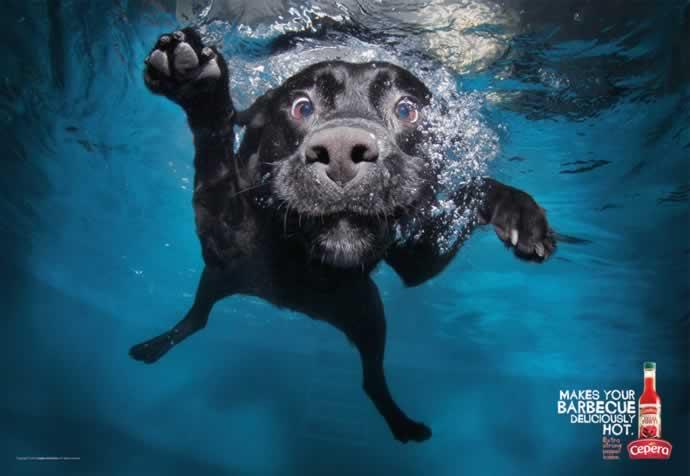 107 publicités designs et créatives de Juin 2012 24