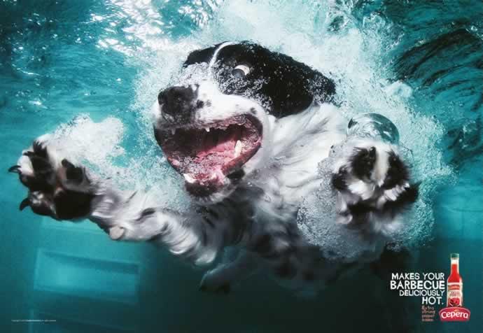 107 publicités designs et créatives de Juin 2012 25