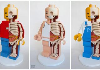 Anatomie de Lego géants