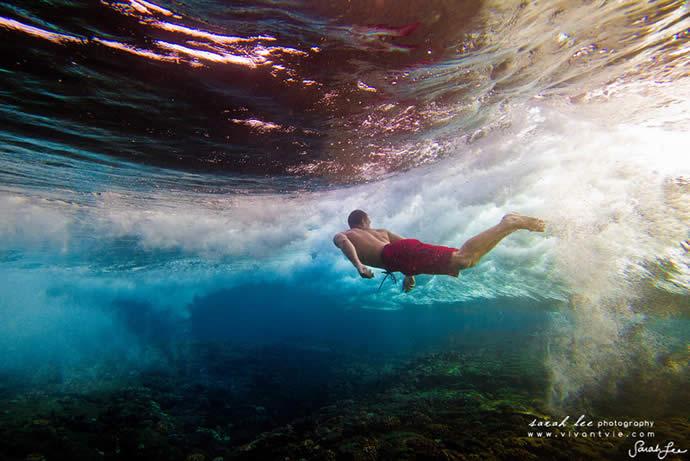 Les photos sous-marines de Sarah Lee 13