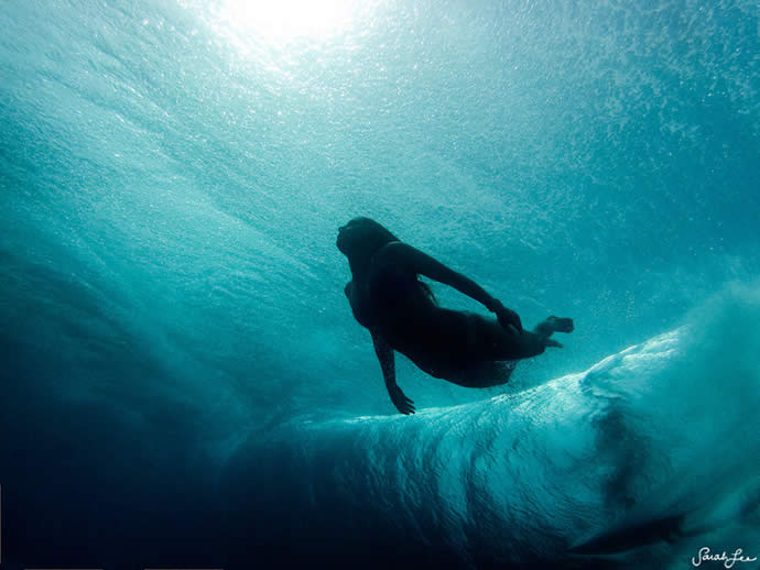 Les photos sous-marines de Sarah Lee 14