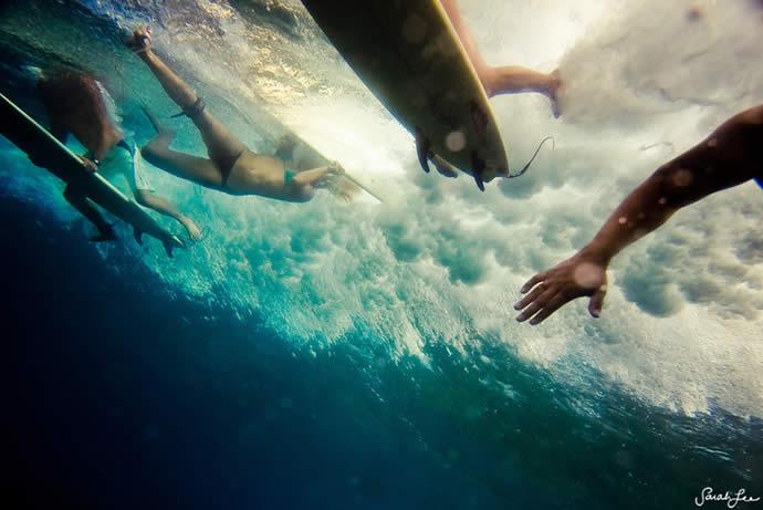 Les photos sous-marines de Sarah Lee 8