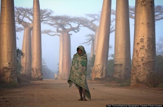 Les 11 gagnants du concours du National Geographic 2012 5