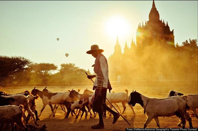 Les 11 gagnants du concours du National Geographic 2012 10