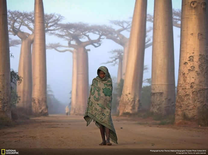 50 superbes photos du concours photos 2012 du National Geographic 42