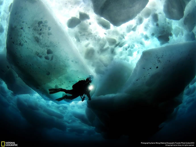 50 superbes photos du concours photos 2012 du National Geographic 27