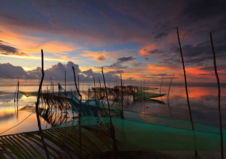 50 superbes photos du concours photos 2012 du National Geographic 1