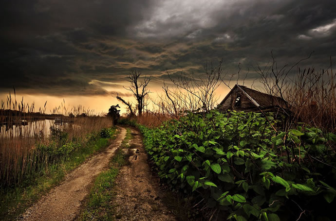 50 superbes photos du concours photos 2012 du National Geographic 5
