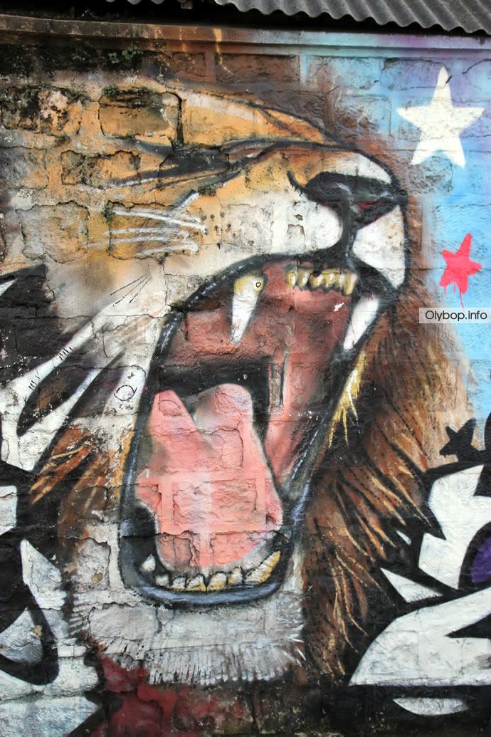 Street-art : Paris fait le show (70 photos) 38