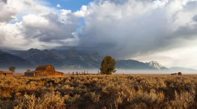 Wyoming Wildscapes