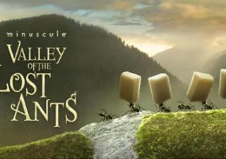 Animation : Teaser Minuscule La Vallée des Fourmis Perdues 1