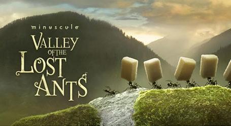 Animation : Teaser Minuscule La Vallée des Fourmis Perdues 5