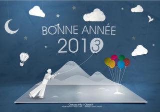 Bonne Année 2013 à tous 1