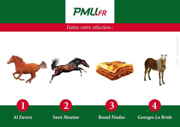 détournement parodie findus cheval (10)