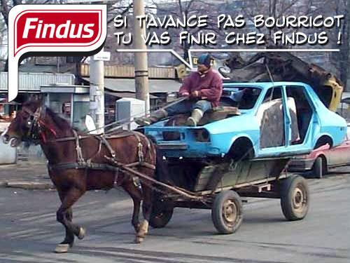 détournement parodie findus cheval (12)