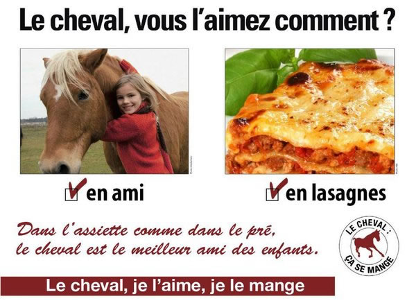 détournement parodie findus cheval (13)